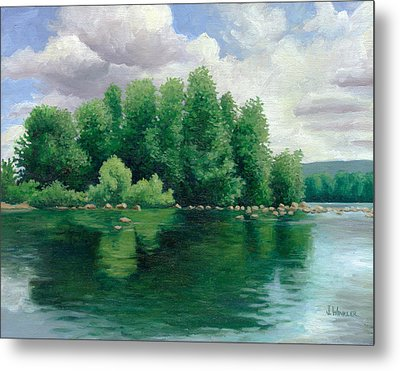 View From The Canoe Metal Print