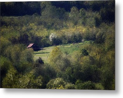 View From The Pond At The Hacienda Metal Print by David Lane