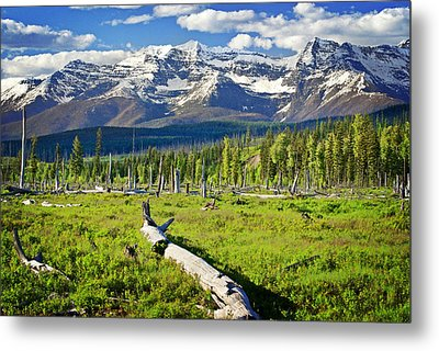 View From The West Metal Print by Marty Koch