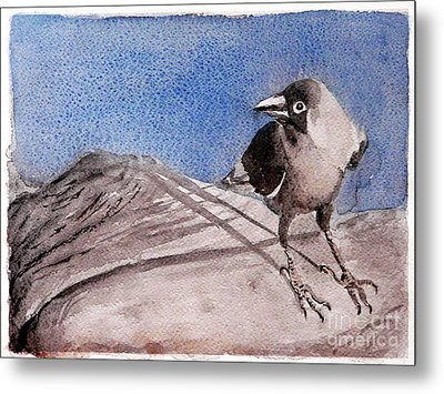 View Metal Print by Jasna Dragun