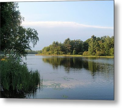 Metal Print featuring the photograph View Of Hamlin Lake by Beth Akerman