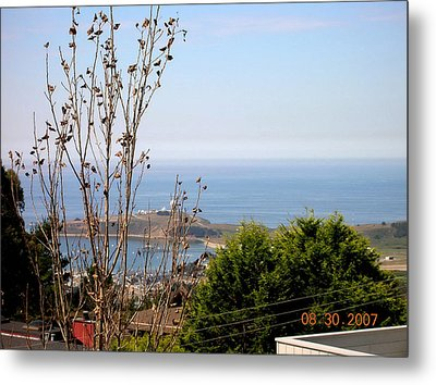 View Of Pillar Point Metal Print by Carolyn Donnell