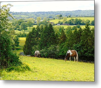 View To Kill For Metal Print by Linda Corby