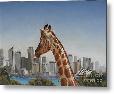 View Towards Sydney Metal Print by Louise Green