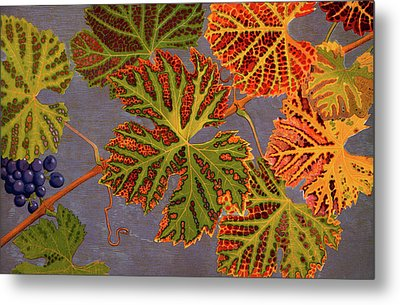 Vine Leaves And Ripened Grapes Metal Print by Philippe Robert