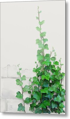 Vines By The Wall Metal Print by Ivana
