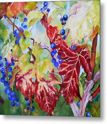 Vines In The Fall Metal Print