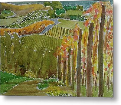 Vineyard And Cultivated Fields Metal Print by Janet Butler