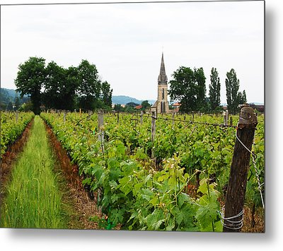 Vineyard In France Metal Print by Marion McCristall