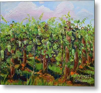 Vineyard Of Chateau Meichtry - Ellijay Ga - Plein Air Painting Metal Print
