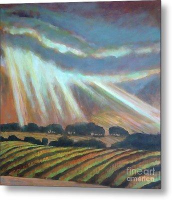 Vineyard Rain Metal Print by Kip Decker