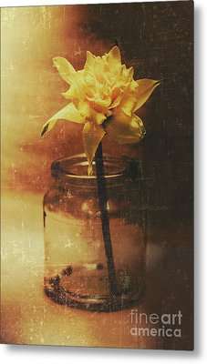 Vintage Daffodil Flower Art Metal Print by Jorgo Photography - Wall Art Gallery