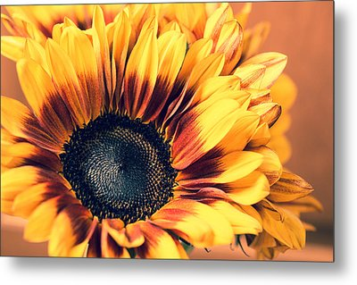 Metal Print featuring the photograph Vintage Fall by Julie Andel