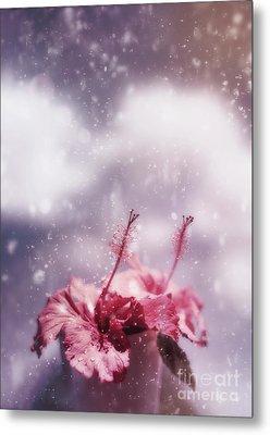 Vintage Flower In The Summer Rain Metal Print