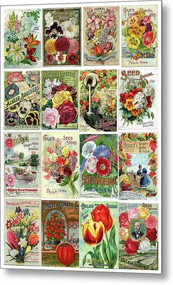 Vintage Flower Seed Packets 1 Metal Print