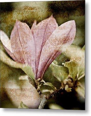Vintage Magnolia Metal Print