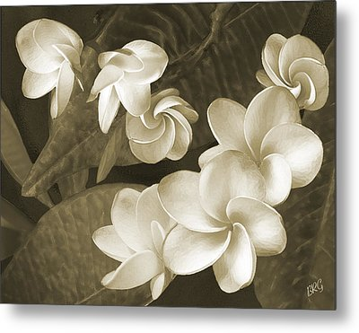 Metal Print featuring the photograph Vintage Plumeria by Ben and Raisa Gertsberg