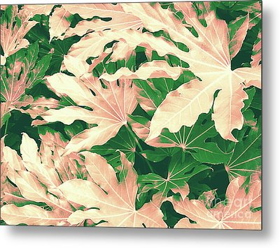 Metal Print featuring the photograph Vintage Season Pink by Rebecca Harman