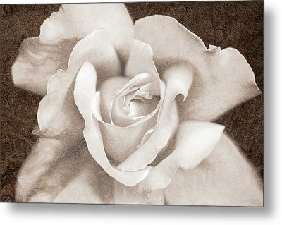 Metal Print featuring the photograph Vintage Sepia Rose Flower by Jennie Marie Schell