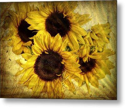 Vintage Sunflowers Metal Print by Wallaroo Images