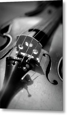Violin Metal Print by Danielle Donders - Mothership Photography