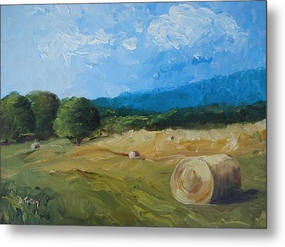 Virginia Hay Bales II Metal Print by Donna Tuten