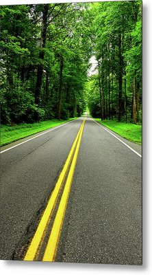 Virginia Road Metal Print