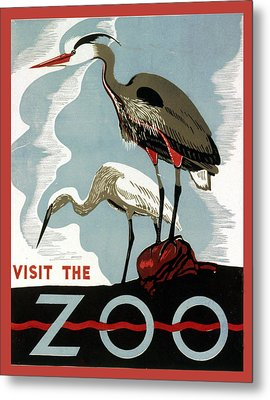 Visit The Zoo Egrets  Metal Print by Unknow