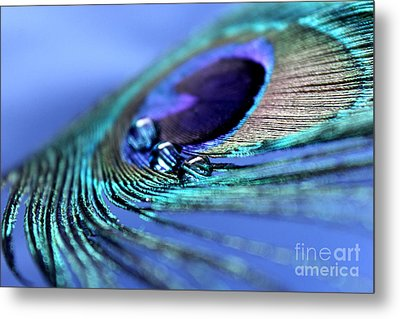 Visualize Your Dream Metal Print