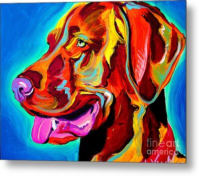 Vizsla - Dog Days Metal Print by Alicia VanNoy Call