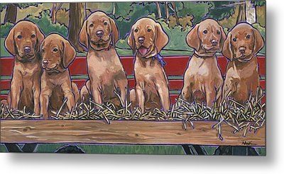 Vizsla Pups Metal Print by Nadi Spencer