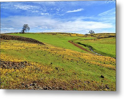 Metal Print featuring the photograph Volcanic Spring by James Eddy