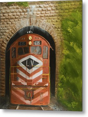 Vosburg Tunnel Metal Print by Christopher Jenkins
