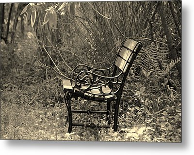Waiting For You Metal Print by Susanne Van Hulst