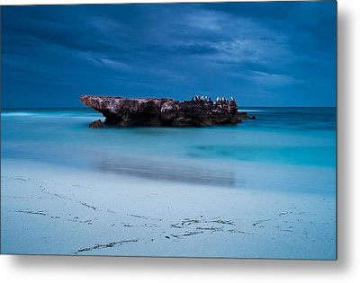 Waiting In Silence Metal Print by Heather Thorning