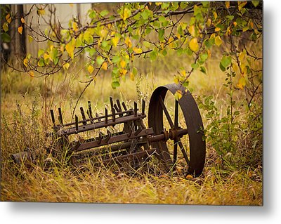 Waiting On My Other Wheel Metal Print by Toni Hopper