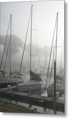 Waiting On The Fog Metal Print by Laurie With