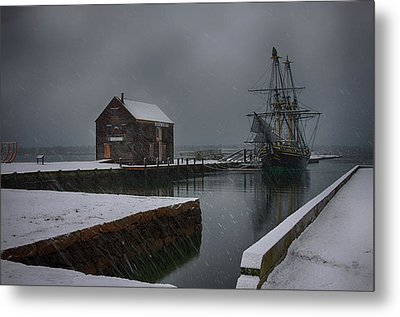 Waiting Quietly Metal Print by Jeff Folger