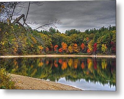 Walden Pond Fall Foliage Concord Ma Metal Print