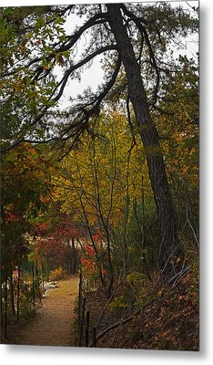 Walden Pond Path Into The Forest 2 Metal Print
