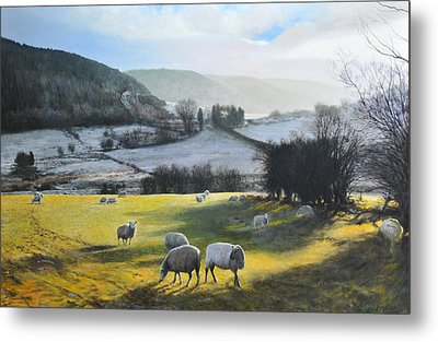 Wales. Metal Print by Harry Robertson
