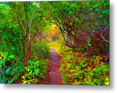 Walk In The Woods Metal Print by Lilia D