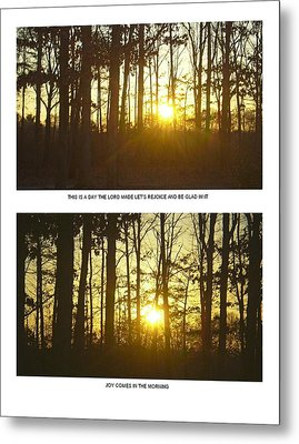 Metal Print featuring the photograph Walk In The Woods Two by Robin Coaker