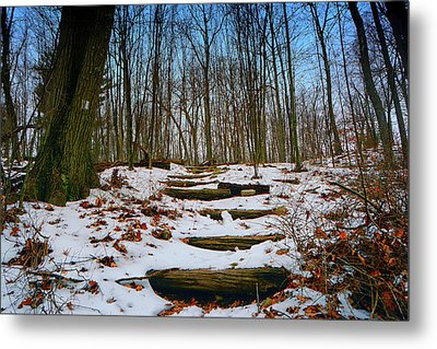 Walk To Palisades Interstate Parkway Metal Print by Raymond Salani III