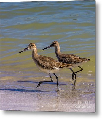 Walk Together Stay Together Metal Print by Marvin Spates