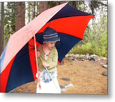 Metal Print featuring the photograph Walking In The Rain by Dan Whittemore