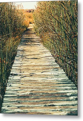 Metal Print featuring the photograph Walking Path by Alexey Stiop