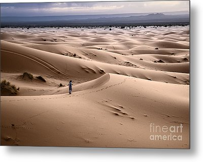 Metal Print featuring the photograph Walking The Desert by Yuri Santin