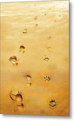 Walking The Dog Metal Print by Mal Bray