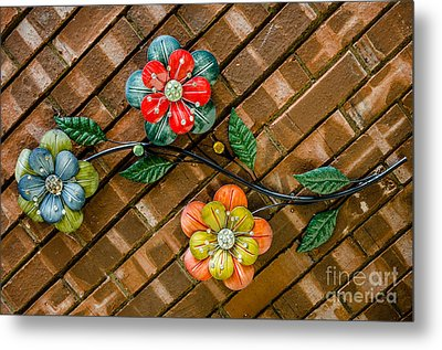 Wall Flowers Metal Print